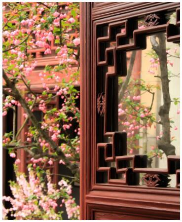 Garden trip to China 2