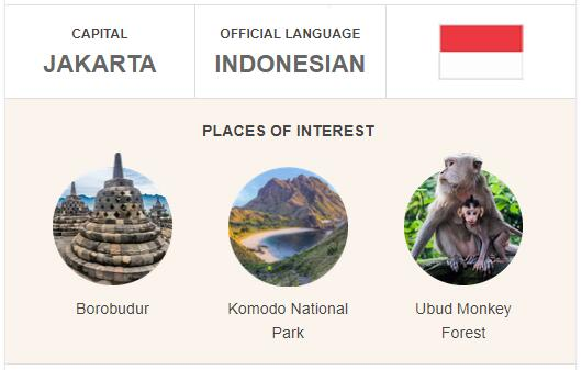 Official Language of Indonesia