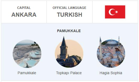 Official Language of Turkey